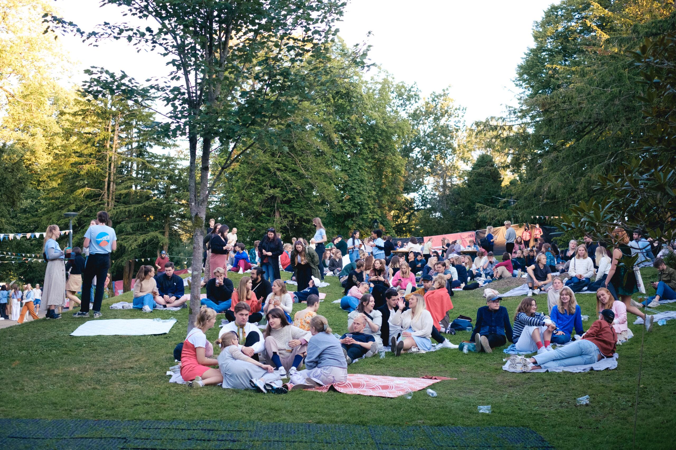 Deilige vibes under Høydenfestivalen. Foto: Truls Lerø